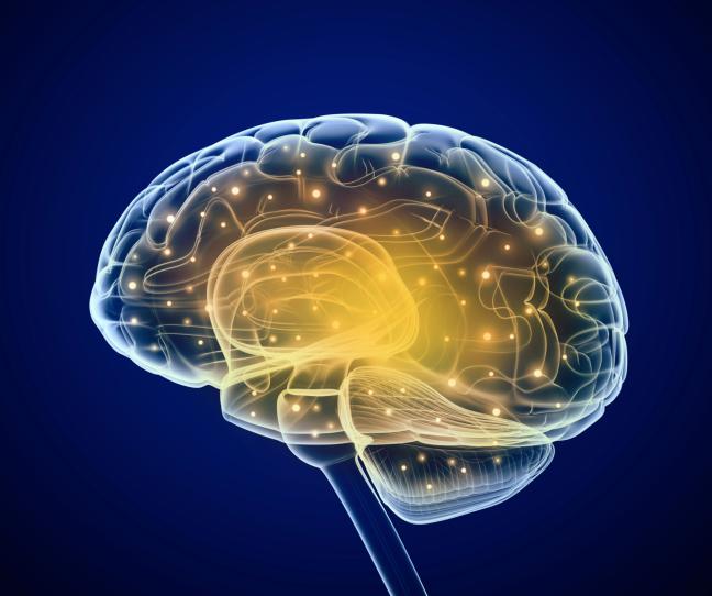 Bij mensen met epilepsie zijn de hersenen op een bepaalde manier beschadigd waardoor de verbindingen via neurotransmitters niet meer goed werken