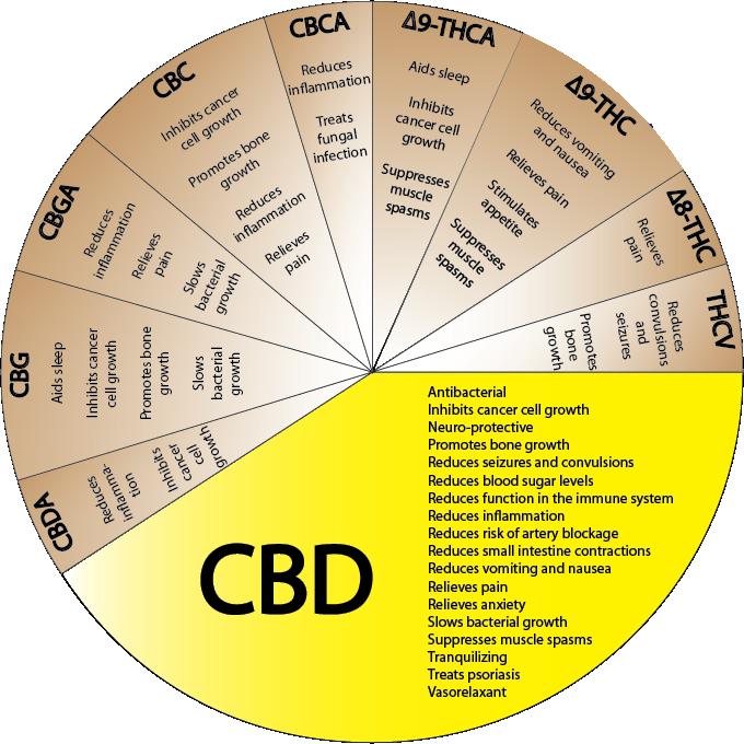 Een kaart met de medicinale voordelen van cannabis, waaronder de topper CBD