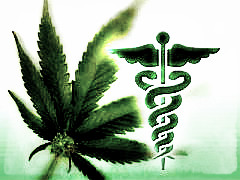 medical-marijuana-cannabis