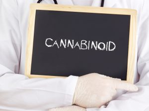 Onder andere de werking van cannabinoïden is van belang [foto: gwolters/Shutterstock]