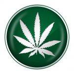 Cannabis is niet van jou, niet van mij, niet van Bedrocan maar van iedereen... [beeld: Benjamin Haas/Shutterstock]