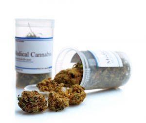 Cannabis is door de patiënten zelf verkozen tot meest effectieve medicijn om de symptomen van fibromyalgie te verzachten [foto: Africa Studio/shutterstock]
