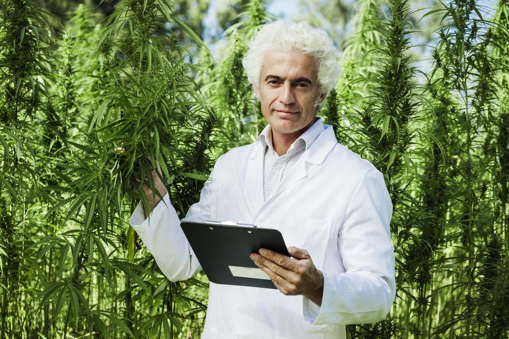 Het is bewezen: daar waar cannabis legaal is genieten ouderen van een betere levenskwaliteit... [Foto: shutterstock/Stock-Asso]