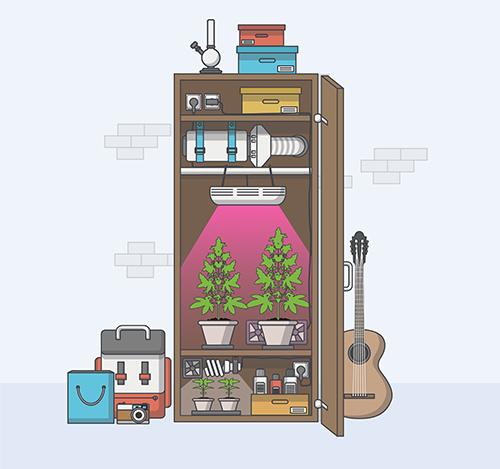 Een kleine kweekruimte is makkelijk te maken van een bestaande kast of kant en klare kweektent. Beeld: Droidworker, Shutterstock.com