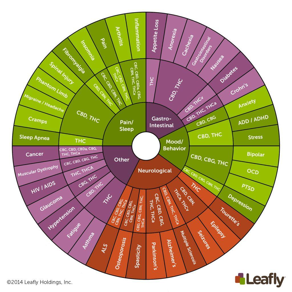 Een aantal van de meest voorkomende cannabinoïden en hun effect op het menselijk lichaam. Foto: Leafly