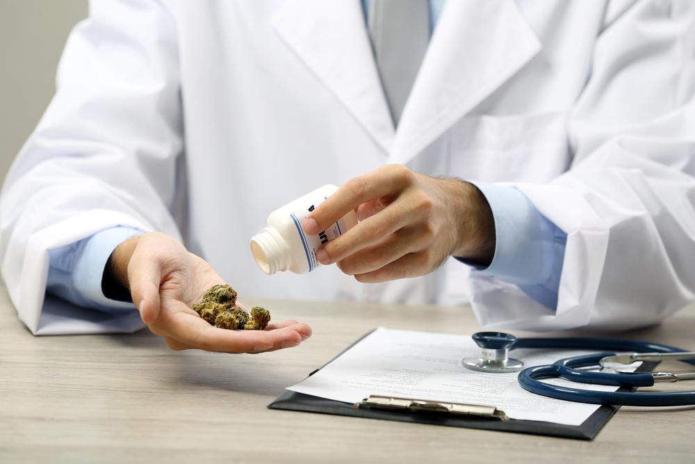 Het BMJ zegt dat doktoren de verantwoordelijkheid hebben om - wetenschappelijk onderbouwd - de hervorming van cannabiswetten te steunen in het belang van de volksgezondheid. [Foto: shutterstock/Africa Studio]