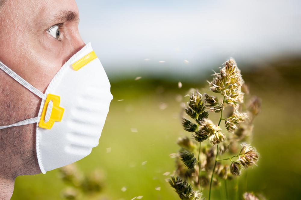 Allergie Planten Huid : Kun je allergisch zijn voor wiet? mediwietsite