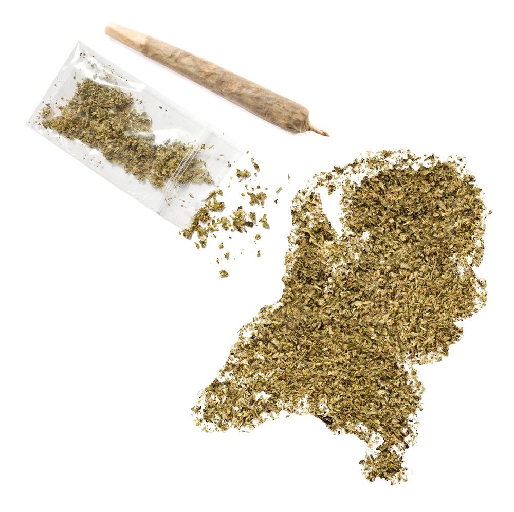 De Duitse overheid vraagt onder andere aan Nederland om extra aanvoer van medicinale cannabis. Overheidsteler Bedrocan kan door een overschot aan groeicapaciteit de cannabis leveren, tegen betaling uiteraard. [Foto: shutterstock/per-bengtsson]