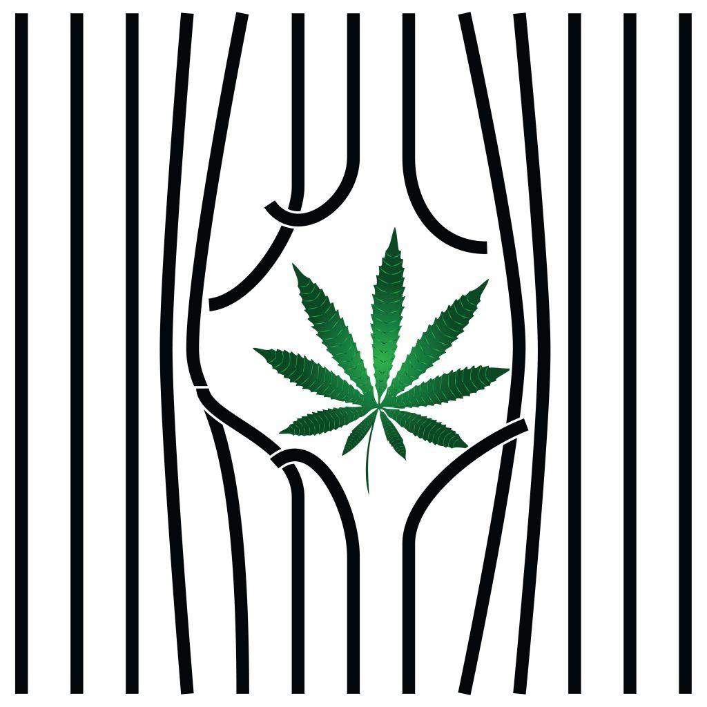 Hoewel wietolie er voor patiënten legaal wordt, mogen de planten ervoor niet worden gekweekt op de Kaaiman eilanden. [Foto: shutterstock/Constantine Pankin]