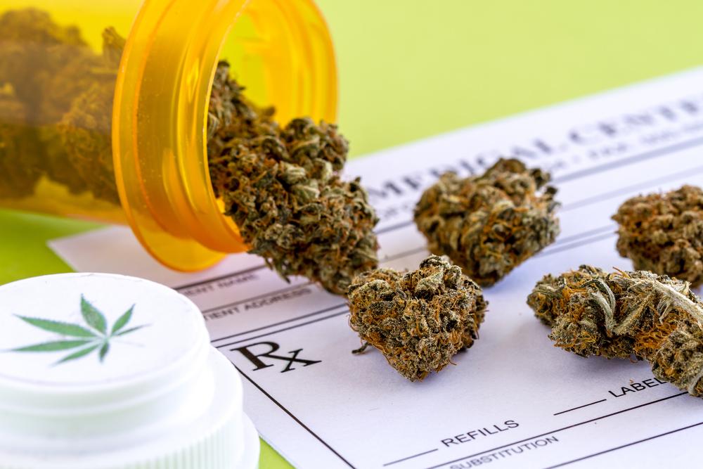 Vraag patiënten zorgt voor groei medicinale cannabis-industrie - Mediwietsite