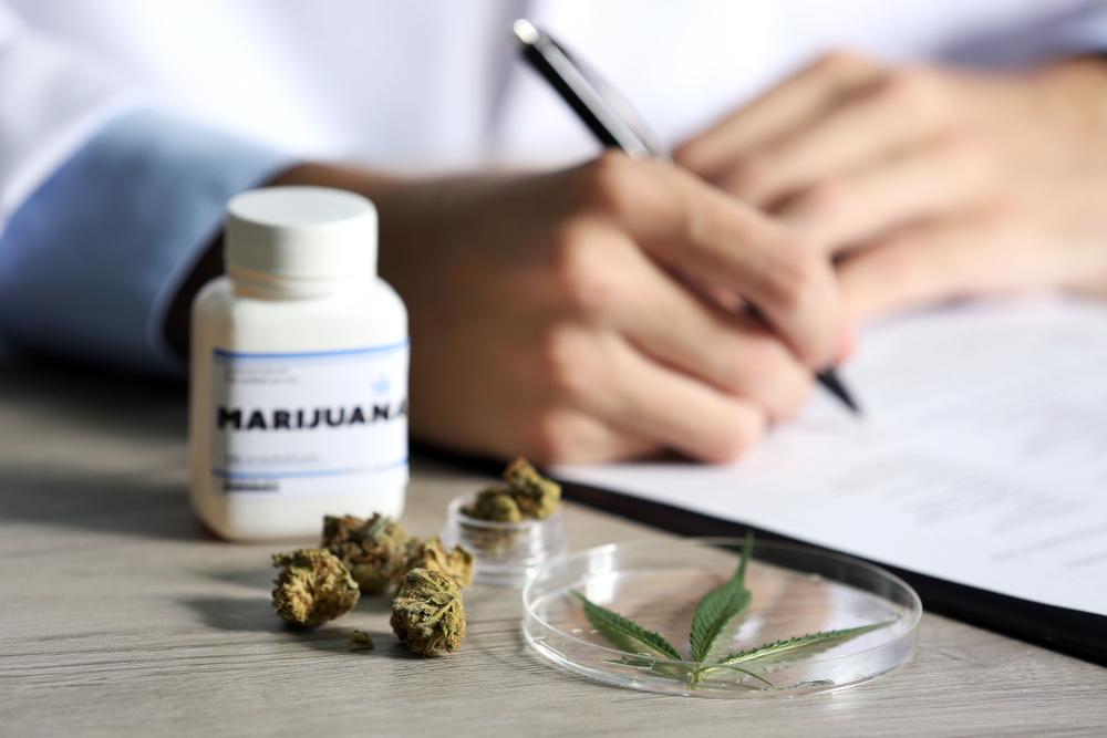 Nederlands onderzoek cannabis bij Fibromyalgie onderweg - Mediwietsite