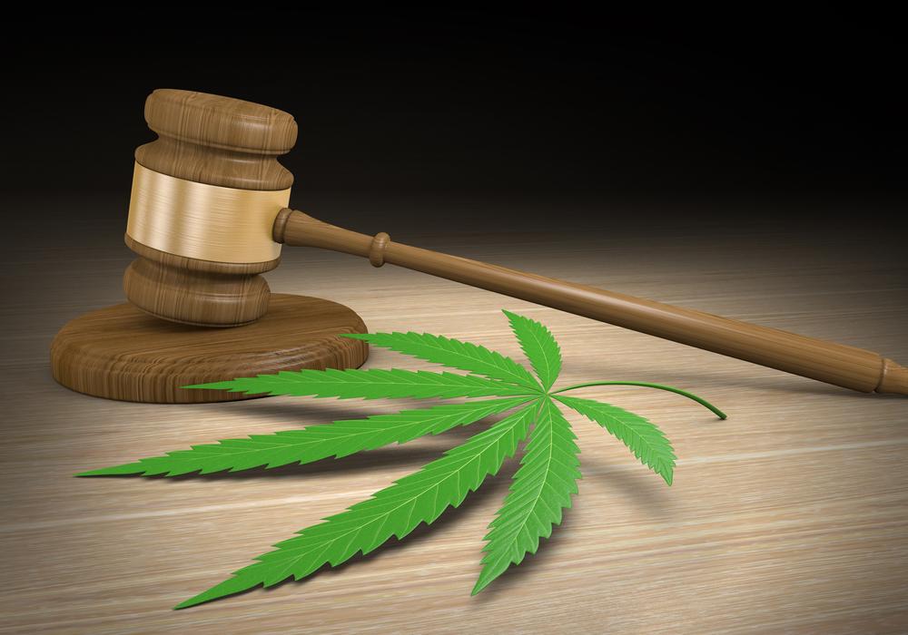 Legale medicinale cannabis in Duitsland - de regels - Mediwietsite