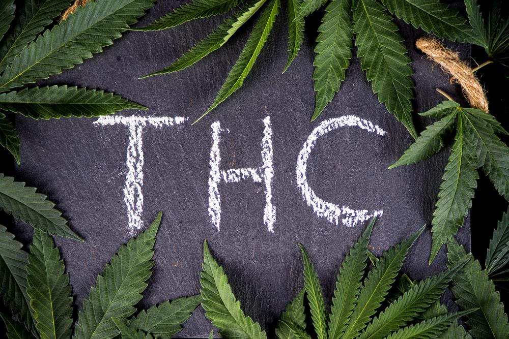 Wat je nog niet weet over THC - 5 weetjes - Mediwietsite