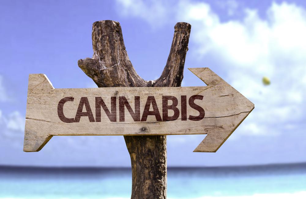 cannabis mee op vakantie