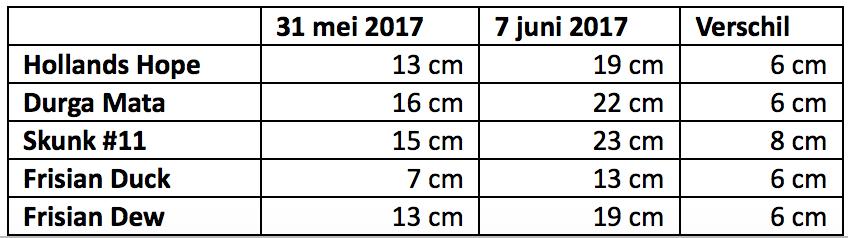 Dagboek van een wietzaadje 3 wietplanten in de wind mediwietsite - Cm breedte van de basis tabel ...